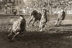 Sisters Oregon Rodeo - GARY N. MILLER