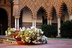 Patio de las Doncellas- Real Alcazar de Sevilla