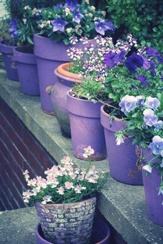 Pot painted purple with purple flowers.