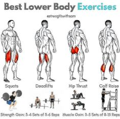 Quadriceps: Squats (Back or Front)Hamstrings: Conventional DeadliftGlutes: Hip ThrustCalves: Standing Calf Raise__Each of these exercises should be included in your lower body training plan for optimal development.__For primaril Gym Workout Tips, Fitness Workouts, Weight Training Workouts, Ab Workout At Home, At Home Workouts, Fitness Motivation, Fitness Tips, Fitness Nutrition, Workout Routines