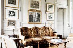 gold frames...DONE animal prints