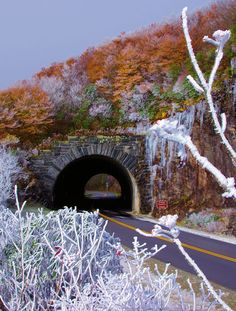 Blue Ridge Parkway tunnel with fall color and rime ice near Asheville