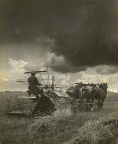 Lóvontatású aratógép. 1930. Old Photos, Vintage Photos, Austro Hungarian, Hungary, Budapest, Art Photography, Collage, Horses, History