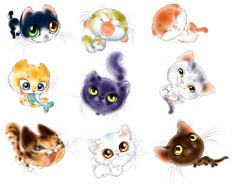 cats, kittens, Graphics, animation, png