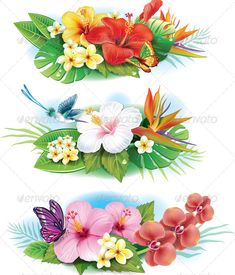 Buy Arrangement of Tropical Flowers by on GraphicRiver. Arrangement from tropical flowers. Tropical Flowers, Tropical Flower Tattoos, Hawaiian Flowers, Hibiscus Flowers, Exotic Flowers, Pretty Flowers, Art Floral, Deco Floral, Decoupage