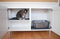 Practicat Hidden Catbox Cabinet by PoshCatProductions on Etsy