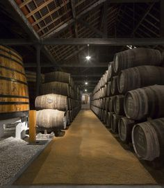 Graham Port Lodge, Porto. We took the tour and did a tasting at the end. The entire place had a facelift this year and the Port is one of the best. Great experience, and really nice and helpful staff.