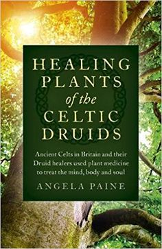 FREE [PDF] Healing Plants of the Celtic Druids: Ancient Celts in Britain and Their Druid Healers Used Plant Medicine to Treat the Mind, Body and Soul by Angela Paine Free Epub/MOBI/EBooks Healing Herbs, Medicinal Plants, Natural Healing, Celtic Paganism, Celtic Druids, Bio Vegan, Witchcraft Books, Design Jardin, Book Of Shadows