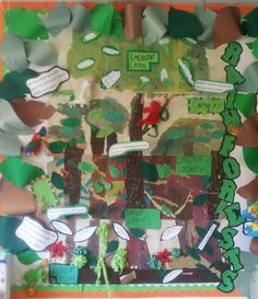 Collaborative rainforest display. Each group given a layer of the rainforest to research and present. Whole class display.
