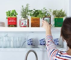 kitchen upgrade // add fresh herbs planted in cheery containers