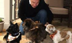 This hotel has adorable adoptable dogs as their welcoming committee   - Posted on Roadtrippers.com!