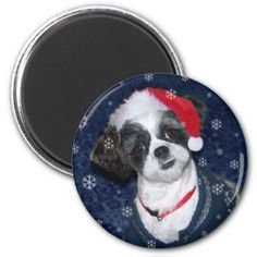 Christmas Shih Tzu Dog Magnet. See more of our cute magnets, funny magnets and funny saying firdge magnets here: http://www.zazzle.com/ironydesignphotos/refrigerator+magnets?dp=252925389927508471&rf=238222968750191371&tc=pinterest #magnets