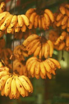Small bananas called Guineitos niños, in Puerto Rico. Fruit And Veg, Fruits And Vegetables, Fresh Fruit, Juicy Fruit, Puerto Rican Cuisine, Puerto Rican Recipes, Exotic Fruit, Tropical Fruits, Habichuelas Guisadas