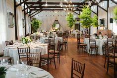 Wedding Venue Charlottesville, VA   Shades of Green   Pippin Hill Farm