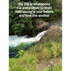 Teaching Aids, Teaching Resources, Maori Words, Maori Designs, Proverbs Quotes, Early Childhood Education, Creative Kids, Growth Mindset, Social Justice
