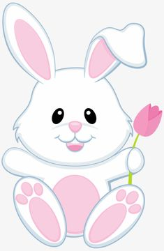 Small white bunny, Animal, Rabbit, Lovely PNG Image