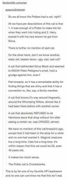 Harry Potter Headcanon that Crookshanks was the Potters' cat. James Potter, Harry Potter Love, Harry Potter Universal, Harry Potter Fandom, Harry Potter Memes, Headcanon Harry Potter, Harry Potter Theories, Harry Potter Potions, Harry Potter Ships