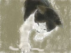 Shozo Ozaki Cute Cat Illustration, Cat Illustrations, Asian Cat, Super Cat, White Cats, Domestic Cat, Cat Drawing, Animal Paintings, Crazy Cats