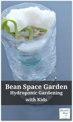 Hydroponic Gardening with Kids &; Bean Space Garden Kids will love watching the bean seed grow with&; Hydroponic Gardening with Kids &; Bean Space Garden Kids will love watching the bean seed grow with&; Science Activities For Kids, Easy Science, Science Experiments Kids, Stem Activities, Learning Activities, Science Centers, Science Room, Nature Activities, Preschool Science