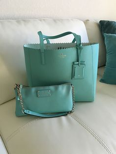 A purse and brief case I used all the time. You know I love Aqua.