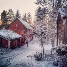 Snowy property.