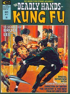 Cool Bruce Lee comicbook