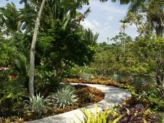 Contemporary Tropical Brazilian Garden Patio Pathway Exterior