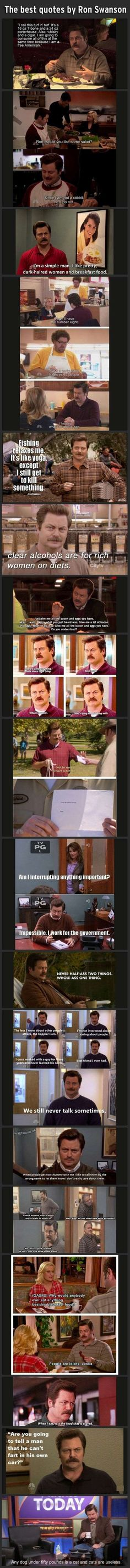 ALL OF THE LAUGHTER, Ron Swanson.