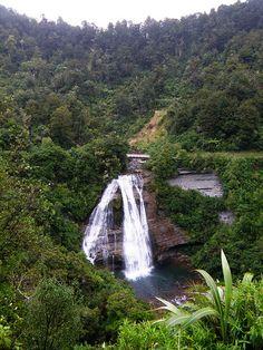 Te Urewera National Park, New Zealand