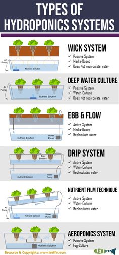 There are 6 basic types of hydroponic systems; Wick Water Culture Ebb and Flow (Flood Drain) Dr&; There are 6 basic types of hydroponic systems; Wick Water Culture Ebb and Flow (Flood Drain) Dr&; MerleJenkins […] and flow Hydroponics diy