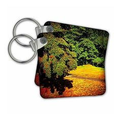 kc_245733 DYLAN SEIBOLD - PHOTOGRAPHY - HEAVY FIR BRANCH OVER TRAIL - #Key Chains  3dRose  Link: