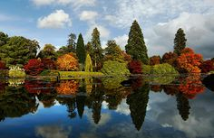 Autumn colours: Autumn leaves are reflected in a pond, Sheffield Park Gardens, East Sussex