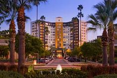 Park La Brea | Pet Friendly Apartments | Los Angeles, CA