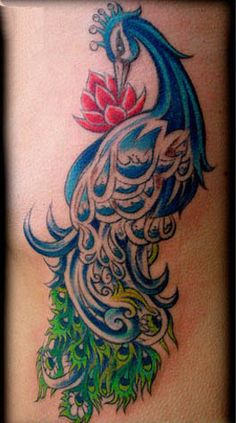peacock tattoos for women | girl tattoos angel tattoos for women small name cover up tattoos stars