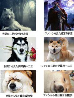 Rap Battle, Husky, Thankful, Twitter, Animals, Animales, Animaux, Animal, Animais