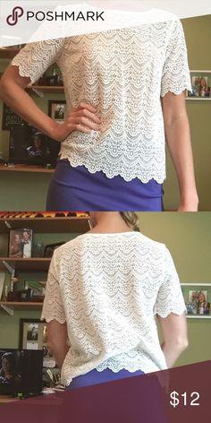 Never worn beautiful shirt! Such a pretty shirt! Tops