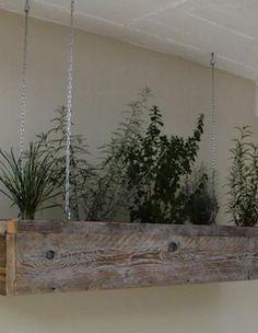 indoor garden 3