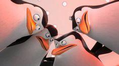 "DREAMWORKS PENGUINS | scene from DreamWorks Animation's ""The Penguins of Madagascar."""