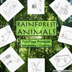 This is a pack of 30 blank hand-drawn rainforest animals. They are full-page printable worksheets that can be used for hundreds of ideas in your classroom, across all grades and subjects! Click on the link for ideas in each subject area. #art #creativewriting #graphicorganizer #endangered #foodchain