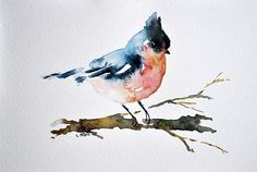 ORIGINAL Watercolor Painting, Titmouse, Impressionist Bird Art, Dark Blue, Orange Red 5x8 inch