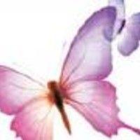 The Elusive Butterfly Of Love by Brendan O& Maestro on SoundCloud Wedding Ceremony, Butterfly, Love, Artist, Plants, Board, Amor, Artists, Plant