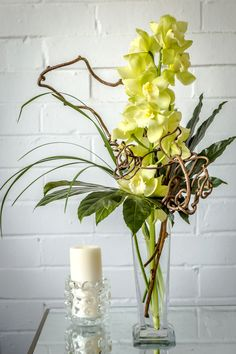 "The Orchid Fabulous, featured on BloomNation.com, PERFECT for St. Patrick's Day decor. The arrangement is by Daryl Wiseman Flowers located in Atlanta, GA. It is a ""beautiful long lasting stem of Cymbidium orchids and exotic foliage and beautiful Kiwi vine in a tall vase."" $99"
