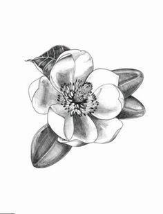 Magnolia Flower in Graphite Pencil - Original - Zeichnen - Gothic Girl Side Tattoos, Wrist Tattoos For Women, Tattoos For Women Small, Back Piece Tattoo, Pieces Tattoo, Back Tattoo, Small Rib Tattoos, Trendy Tattoos, Love Tattoos