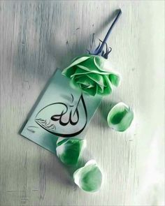 Muslim Love Quotes, Love In Islam, Quran Quotes Love, Quran Quotes Inspirational, Islamic Love Quotes, Religious Quotes, Urdu Quotes, Qoutes, Islamic Whatsapp Dp