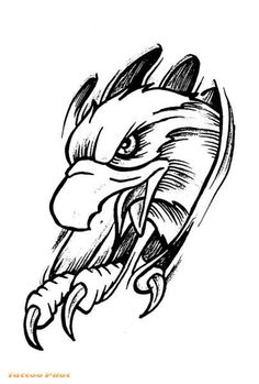 Eagle tattoo stencil - Eagle Free Tattoo Stencil - Free Eagle Tattoo Designs For Men - Free Eagle Tattoo Designs For Woman - Customized Eagle Tattoos - Free Eagle Tattoos - Free Printable Eagle Tattoo Stencils - Free Printable Eagle Tattoo Designs Free Tattoo Designs, Tattoo Design Drawings, Celtic Tattoos, Tribal Tattoos, Wing Tattoos, Sleeve Tattoos, Eagles Tattoo, Tattoo Aigle, Feather Clip Art
