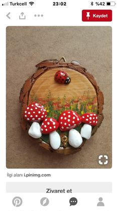 "Image search results for ""christmas diy logs and pebbles"" Source by maudebou Stone Crafts, Rock Crafts, Diy And Crafts, Crafts For Kids, Arts And Crafts, Beach Crafts, Summer Crafts, Pebble Painting, Pebble Art"