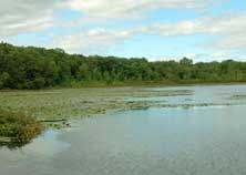 Located in Hammond Pond Parkway. Hammond Pond Reservation is open year-round, dawn to dusk. Information about directions & recreational opportunities