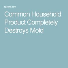 Common Household Product Completely Destroys Mold