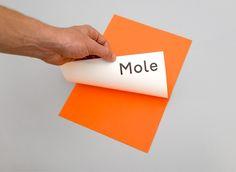 Mole Architects - Identity design by Maddison Graphic