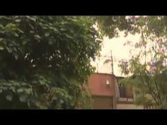 HALLAN AHORCADO A SECRETARIO DE FINANZAS DEL PRD DF VIDEO JULIO MANUEL D...
